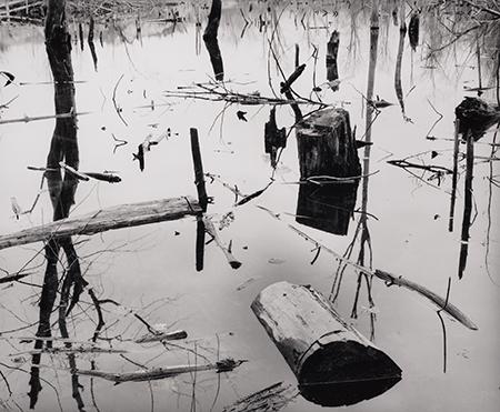 , 'Marshland, Saugus, MA,' 1957, Pucker Gallery