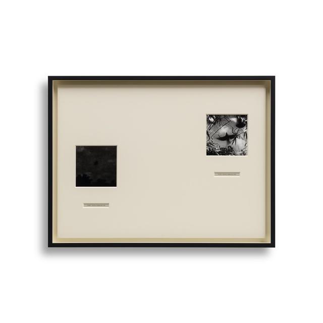 , 'Crab Key,' 2014, Almine Rech
