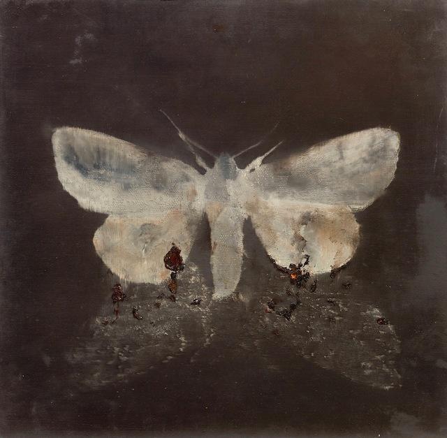 , 'Moth on moth,' 2015, Galerie Leu