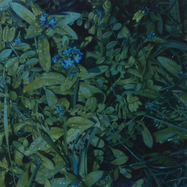 , 'Myosotis,' 2017, Flowers