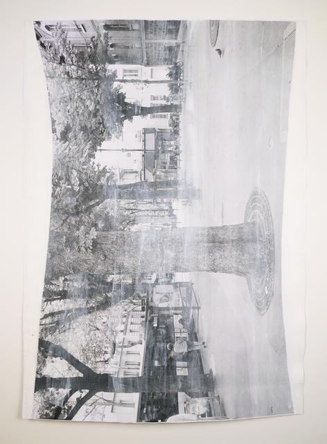 , 'Impermanences, Pigeon Visiting Paris, White + Grey,' 2015, Minus Space