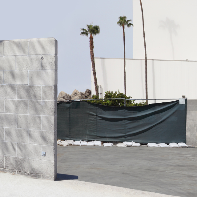 , 'Wall And Palms,' 2016, Galerie Richard