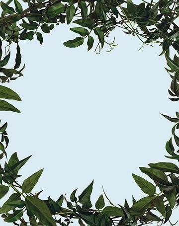 , 'Leaf Frame,' 2002, Maccarone
