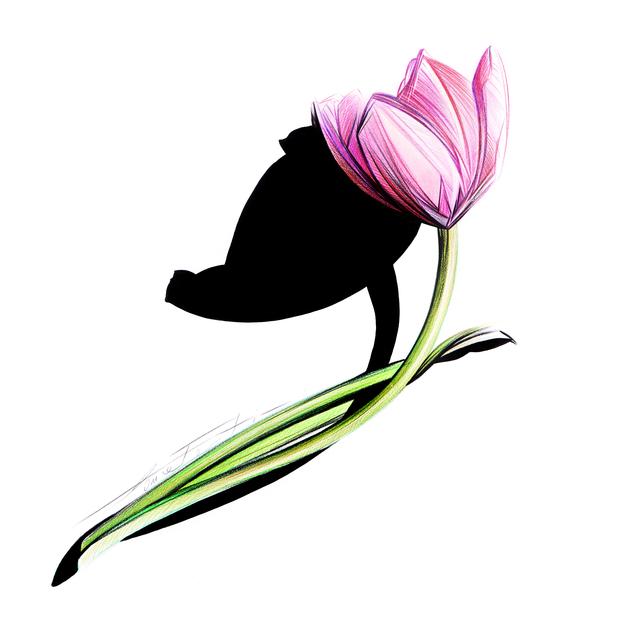 , 'Sketch #56 - Tulip,' 2017, Denise Bibro Fine Art