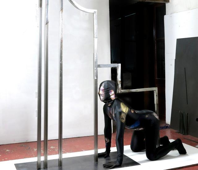 , 'Método de amplificación,' 2014, Nora Fisch