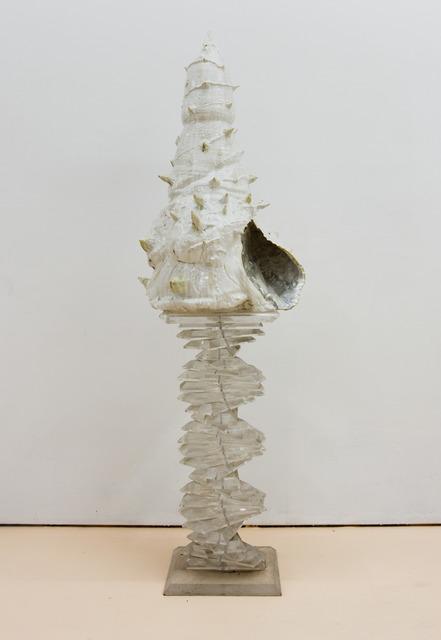 , 'Shell #3,' 2012, SADE