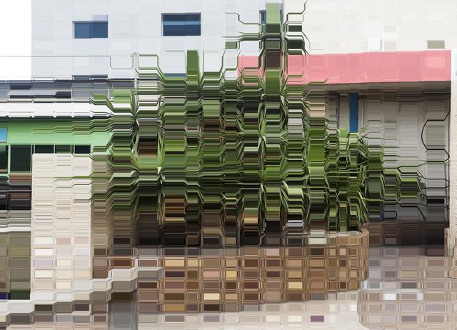 Asaf Gam Hacohen, 'A Star Plant', 2015, Winston Wächter Fine Art