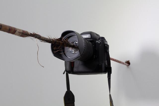 , 'Focus,' 2011, ShanghART