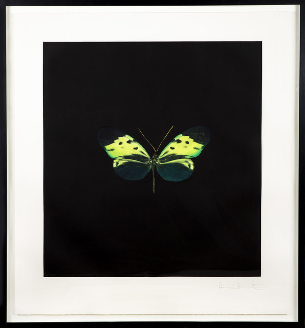 Damien Hirst, 'The Souls on Jacobs Ladder Take Their Flight Green Butterfly', 2007, Modern Artifact