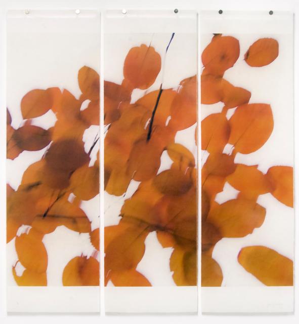 Jeri Eisenberg, 'Seeking Solace No. 4', 2019, Carrie Haddad Gallery