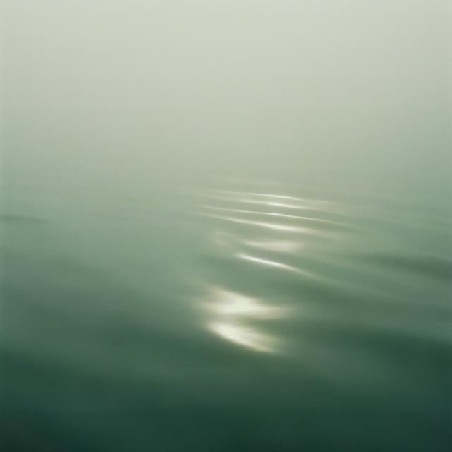 , 'Wilderness 02082-8-07,' 2007, Robert Koch Gallery