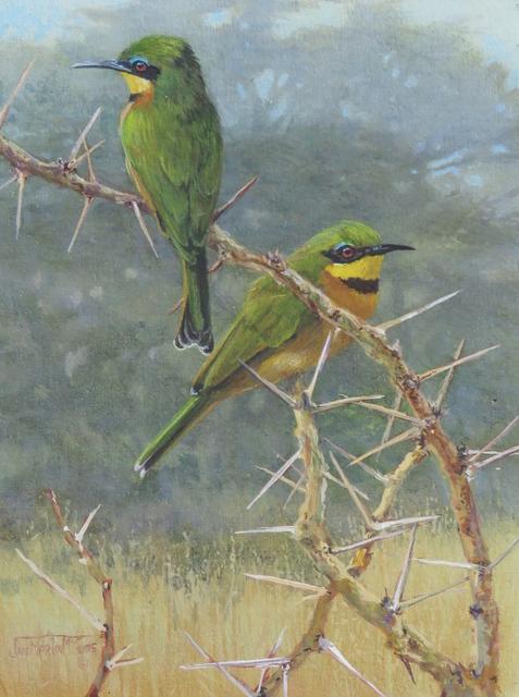 , 'Little, Little Bee Eaters,' , Trailside Galleries