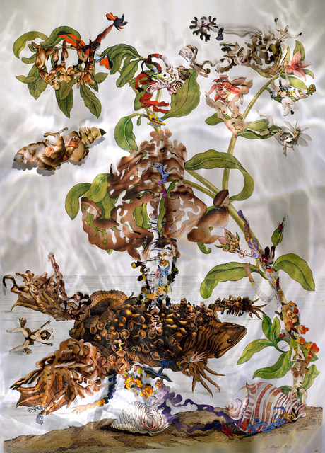 , 'Insects of Suriname 21,' 2014, MIYAKO YOSHINAGA