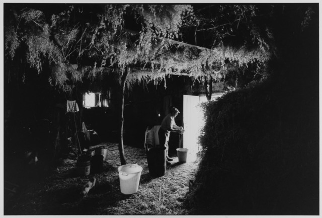 , 'Shepherd in mountain hut making cheese, Madonie Mountains, Sicily, Italy ,' 1974, Gallery 270