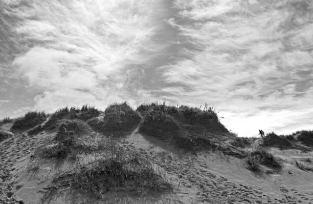 , 'Dune no. 1,' 2017, David Klein Gallery