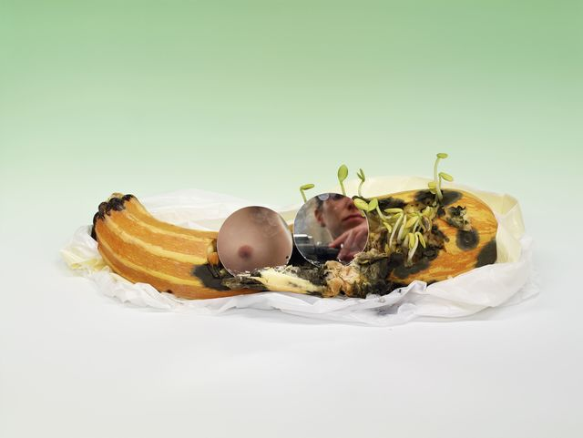 , 'Untitled (Sprouting zucchini with mirrored breast and camera),' 2015, Maccarone
