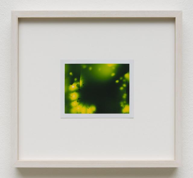 , 'Photuris #13,' 2013, Galerie Crone