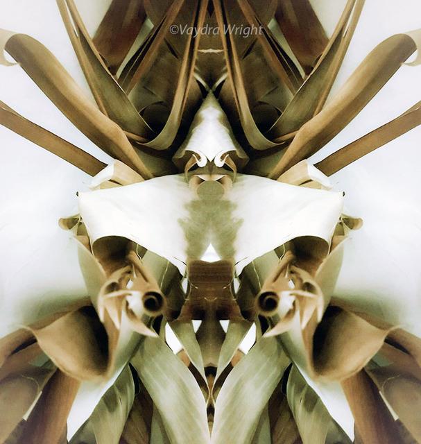 , 'Original Bug Series,' 2018, Agora Gallery