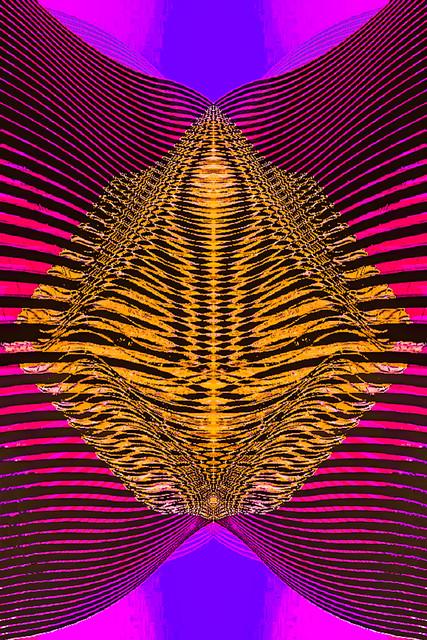 , 'Origin,' 2017, Fine Art Maya