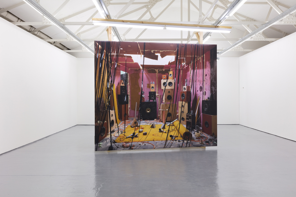 Anne Hardy exhibition view at Maureen Paley, London 2018