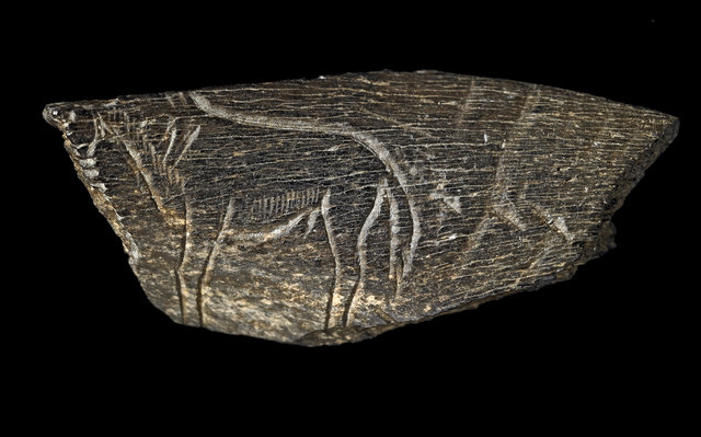 , 'Engraving of a horse; From Montastruc, France,' Palaeolithic, British Museum