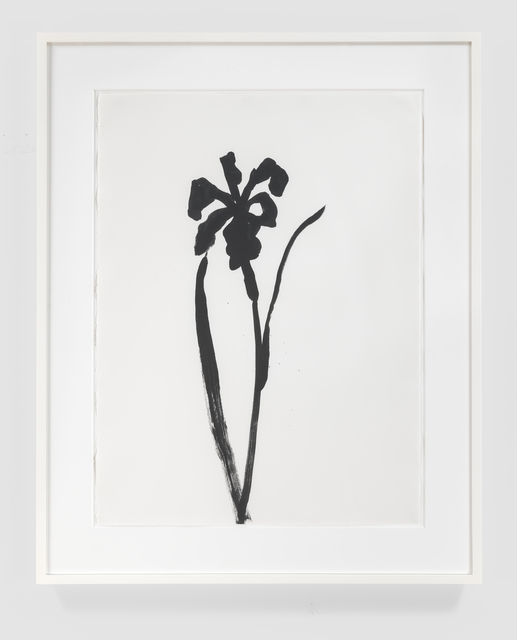 Ellsworth Kelly, 'Siberian Iris', 1989, Susan Sheehan Gallery