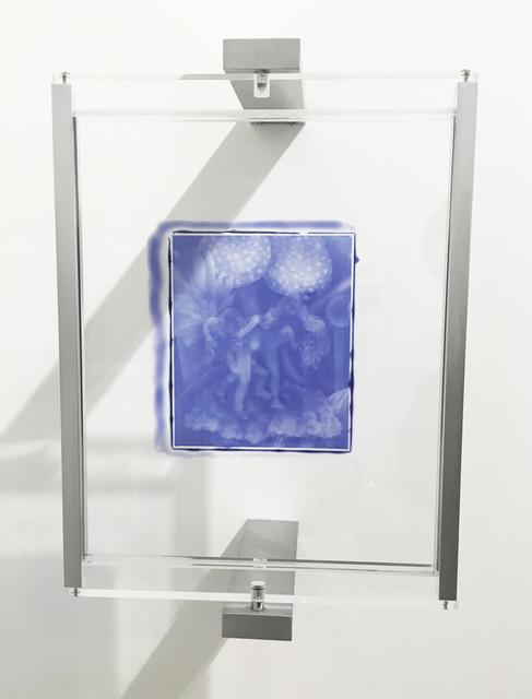 , 'Woodburytype Print of Study Plate 8, Rehab - (purple),' 2015, TJ Boulting