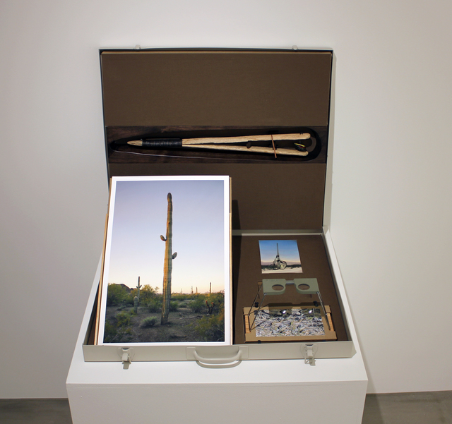 , 'Rattlesnake Box,' 2016, Lisa Sette Gallery