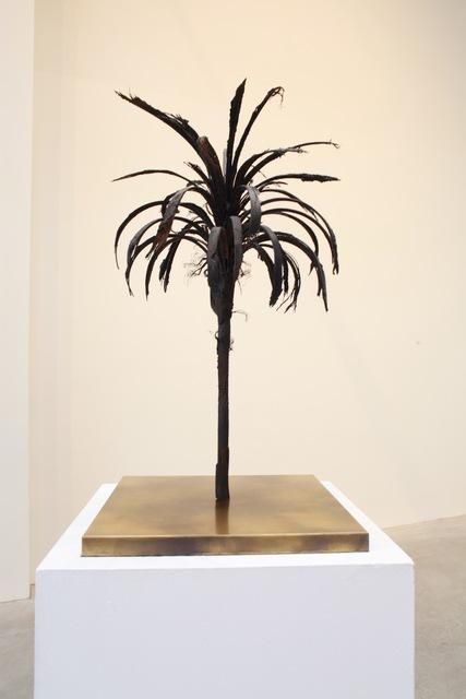 , 'Black Palm Maquette,' 2016, La Patinoire Royale / Galerie Valerie Bach