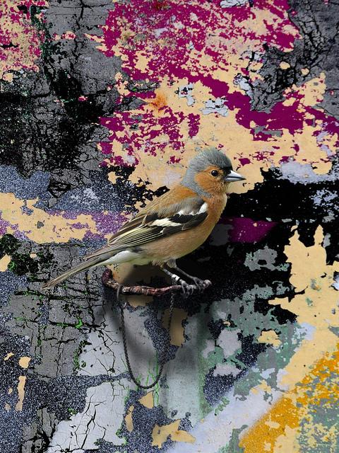 , 'GASCONADES (Streetart),' 2017, Gary Tatintsian Gallery
