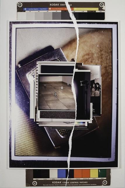 , 'New Reproduction,' 2013, Galleria Massimo Minini