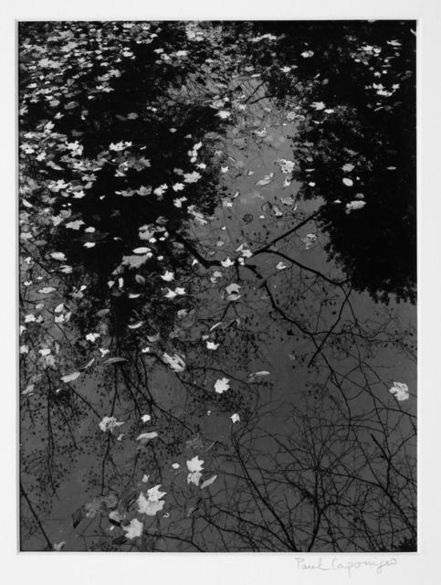 Paul Caponigro, 'Pool & Leaves 1968', 1968, Vision Neil Folberg Gallery