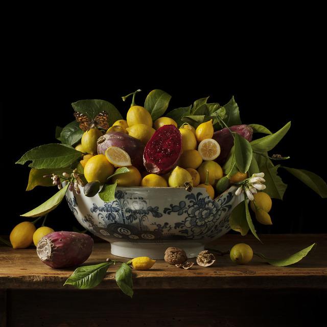 , 'Lemons and Prickly Pears,' 2013, Snite Museum of Art