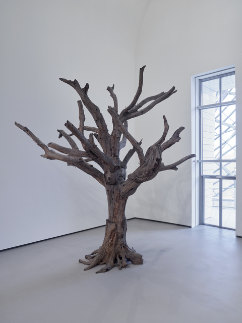 , 'Tree,' 2010, Fondation Louis Vuitton
