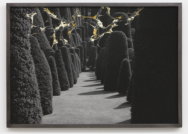 , 'Formal garden in the early morning hours (3),' 2013, Maisterravalbuena