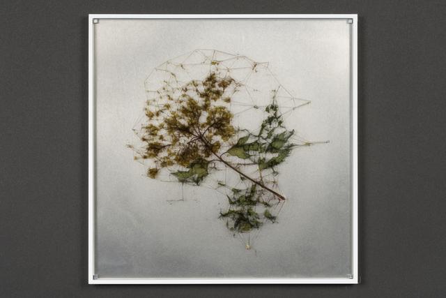 , 'elementum #7,' 2018, Takuro Someya Contemporary Art