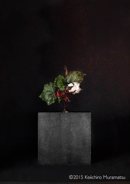, 'A Stage Cotton 3-5,' 2015, Galerie Marie-Robin