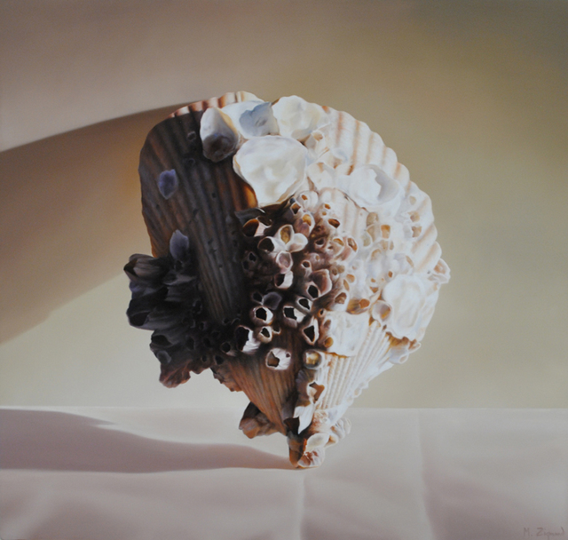 , 'Atlantic Cockle Shell,' 2020, Chase Young Gallery