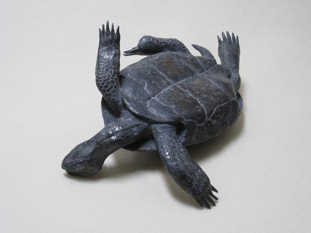 , 'Untitled (tortoise),' 2010, Nancy Hoffman Gallery