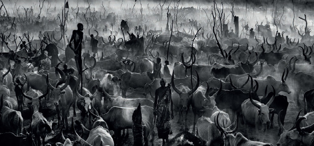 , 'Mankind III (B&W),' 2014, Maddox Gallery