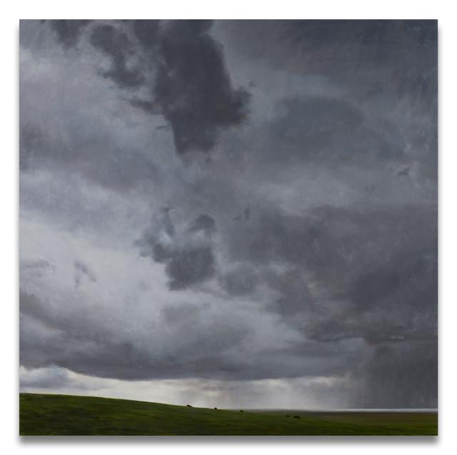 April Gornik, 'The Horizon', 2008, Painting, Oil on linen, Miles McEnery Gallery
