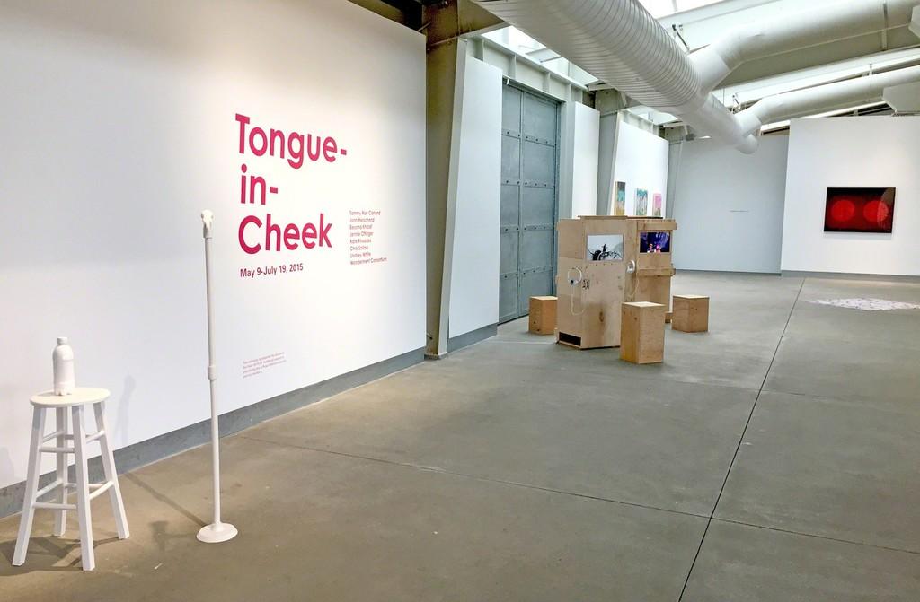 Tongue-in-Cheek at di Rosa, Napa (installation view)