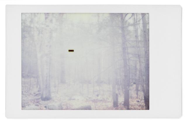 , 'Alien 7,' 2017, Robert Klein Gallery