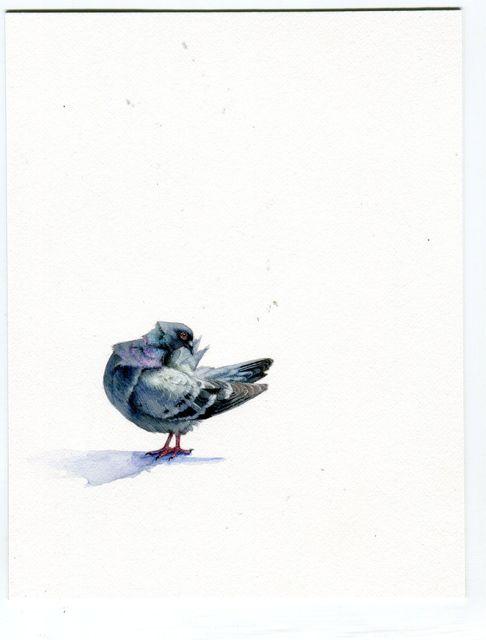 , 'Pigeon,' 2017, Garvey | Simon