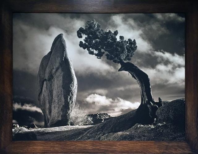 , 'The Big Chief,' 2016, Joshua Tree Art Gallery