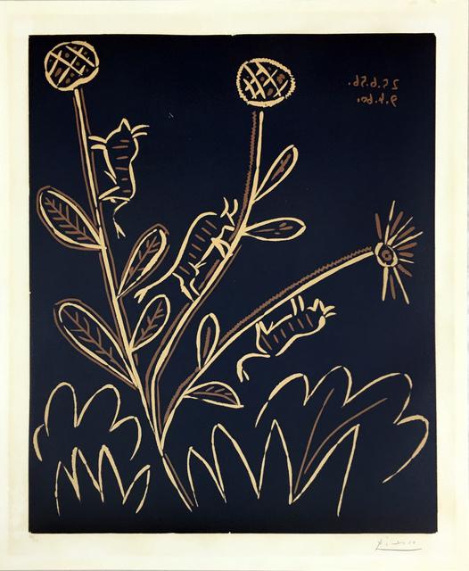 Pablo Picasso, 'Plante aux Toritos', 1959, Hamilton-Selway Fine Art Gallery Auction