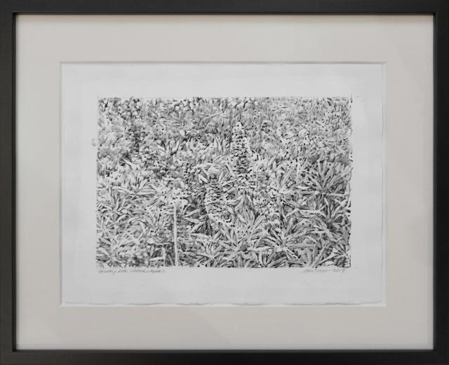 Hugo Bastidas, 'Study for Underlayers', 2017, Nohra Haime Gallery