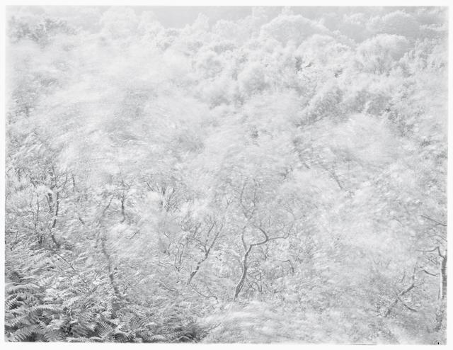 John Blakemore, 'Wind Series II, No. 3', 1981, KLOMPCHING GALLERY