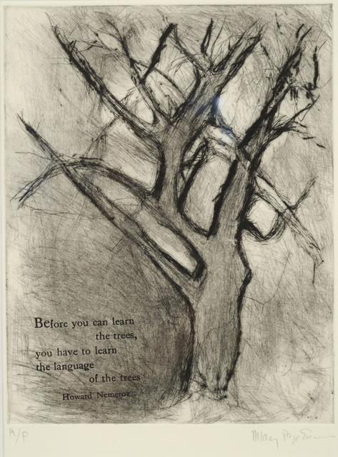, 'Language of the Trees,' 2014, Addison/Ripley Fine Art
