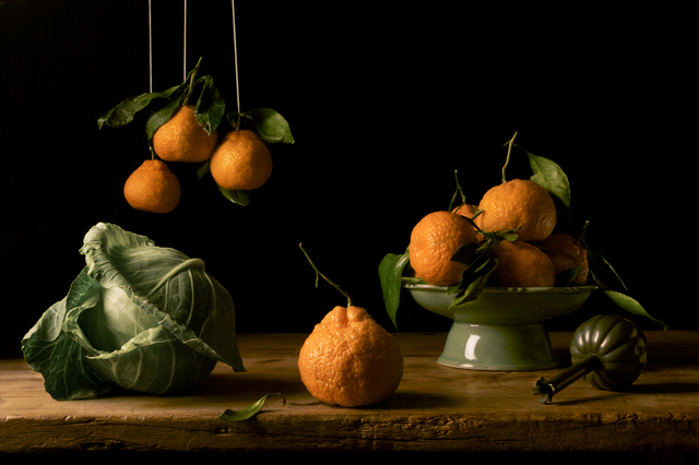 Paulette Tavormina, 'Oranges, after F.d.Z.,' 2009, Robert Klein Gallery